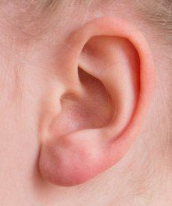 ear 2372090 640 251x300 - Apparato uditivo. Controlla il tuo udito con un semplice test